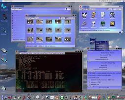 ECOMSTATION FFS DRIVERS WINDOWS XP